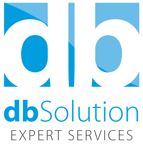 dbSolution Expert Services